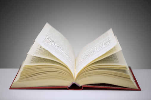 Libro_vocabulario