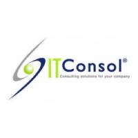 IT Consol